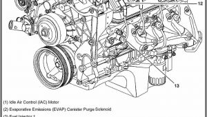 Wiring Diagram for 350 Chevy Engine Silverado 4 8 Engine Diagram Wiring Diagram Fascinating