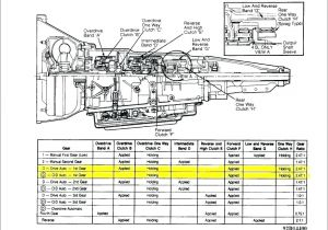 Wiring Diagram for 4l60e Transmission 4l60e Connector Wiring Diagram Diaryofamrs Com