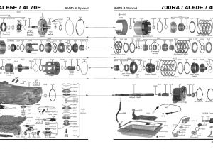 Wiring Diagram for 4l60e Transmission 4l60e Transmission Rebuild Diagram Wiring Diagram Expert