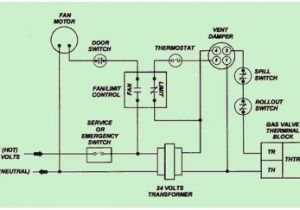 Wiring Diagram for Gas Furnace Ruud Furnace Wiring Diagram Wiring Diagram Blog