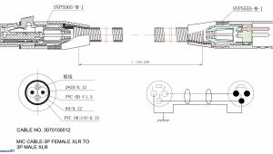Wiring Diagram Trailer Plug Circle W Trailer Wiring Diagram Wiring Diagram Option