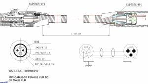 Wiring Diagram Trailer Plug Circle W Trailer Wiring Diagram Wiring Diagram Option