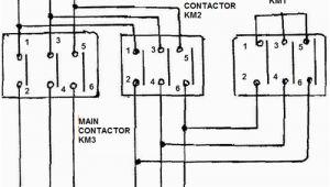 Wye Start Delta Run Motor Wiring Diagram Star Delta Motor Starter Explained In Details Eep