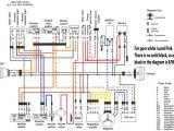 Yamaha Bear Tracker Wiring Diagram 02 Grizzly Cdi Box Wiring Diagram Liar Fuse8 Klictravel Nl