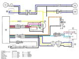 Yamaha Blaster Wiring Diagram 1999 Yamaha Blaster Wire Diagram Wiring Diagram View