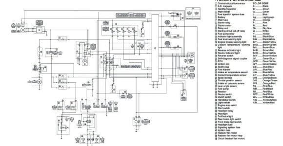 Yamaha Warrior 350 Wiring Diagram Wiring Diagram 89 Yamaha Warrior 350 Wiring Diagram Paper